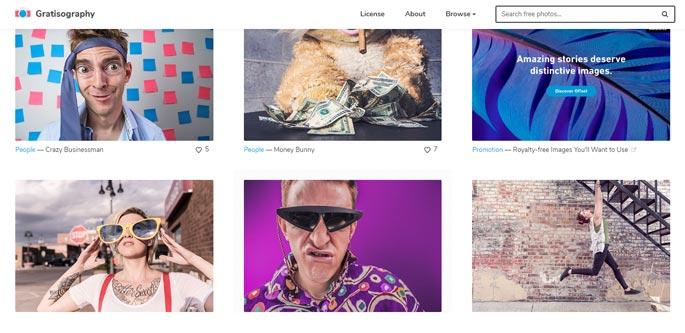Gratisography Free Stock Image
