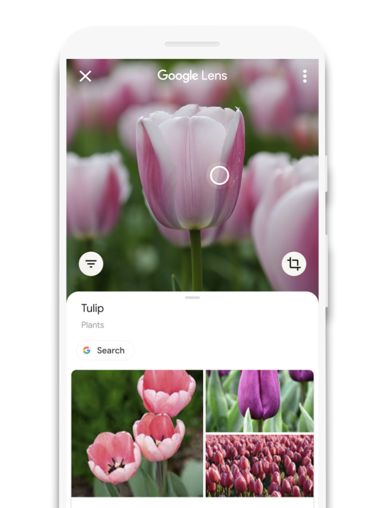 Google Lens for Android scans QR Code
