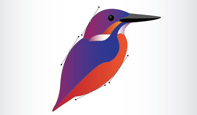 A simple explanation of Vector Graphics & illustrations
