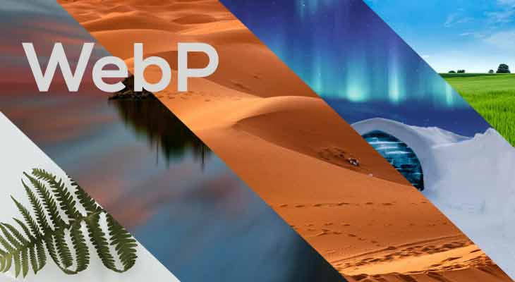 How to Save or Convert WebP images to JPG or PNG